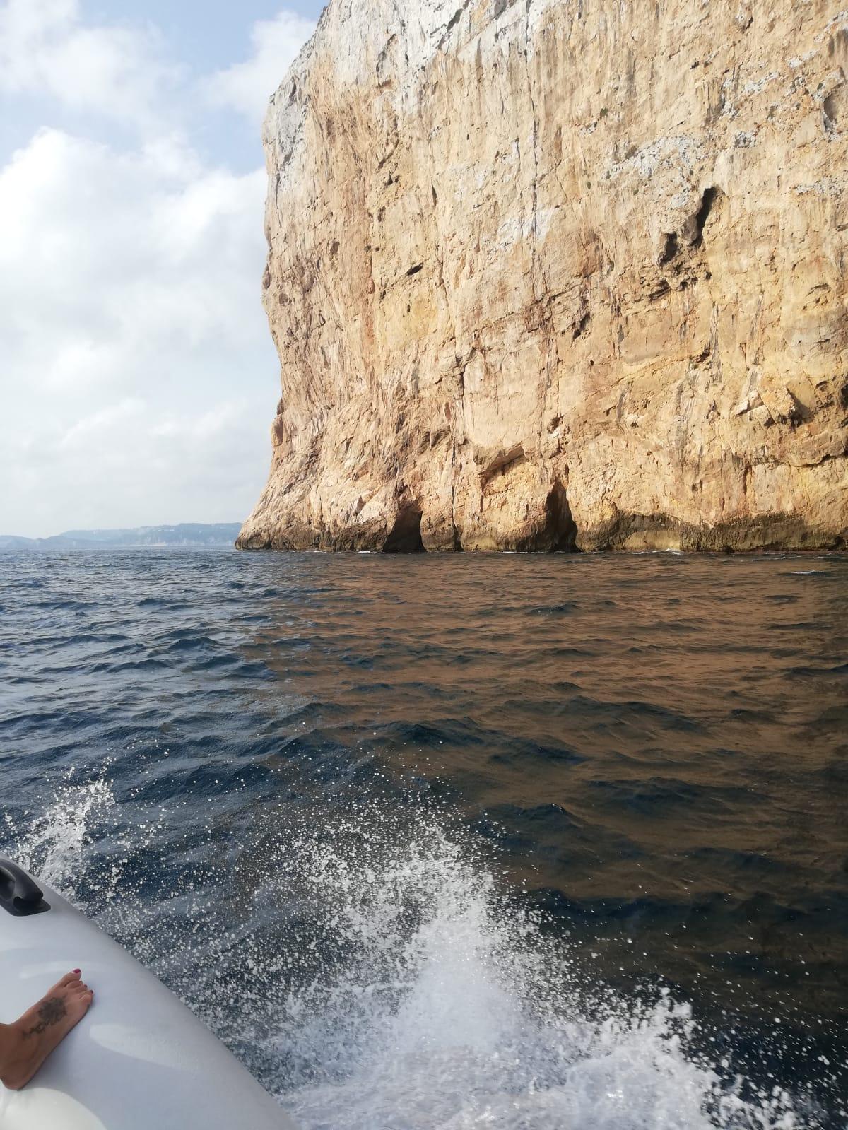 paseo en barco oliva